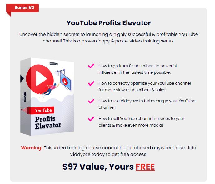 youtube profits elevator as bonus 2