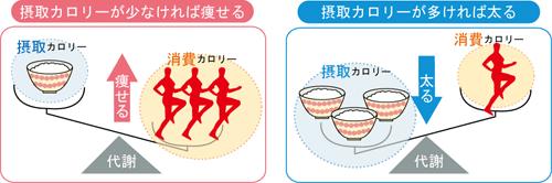 摂取カロリー 消費カロリー