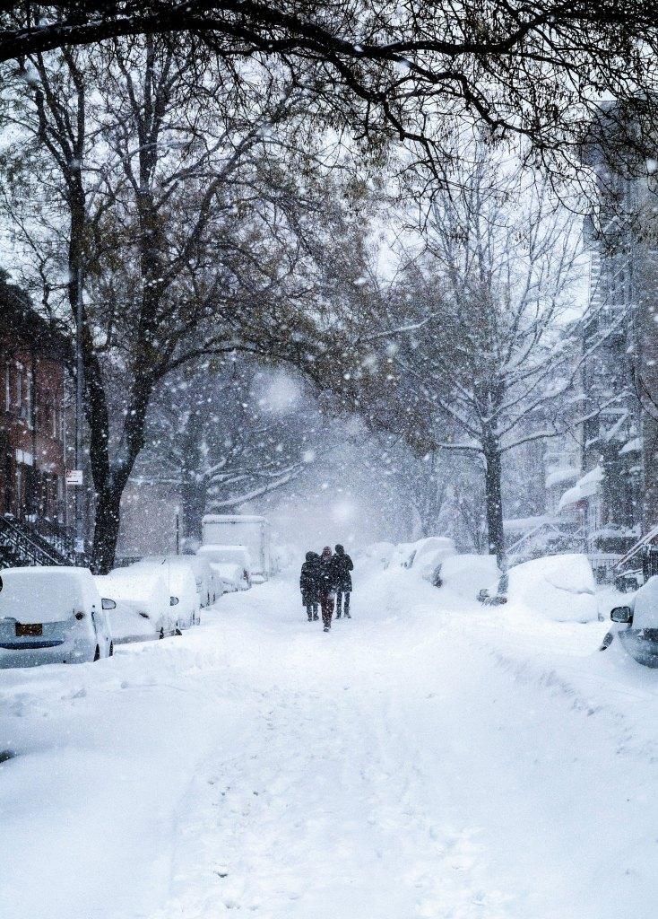 appreciation, nature, seasons, snow, winter, snowfall