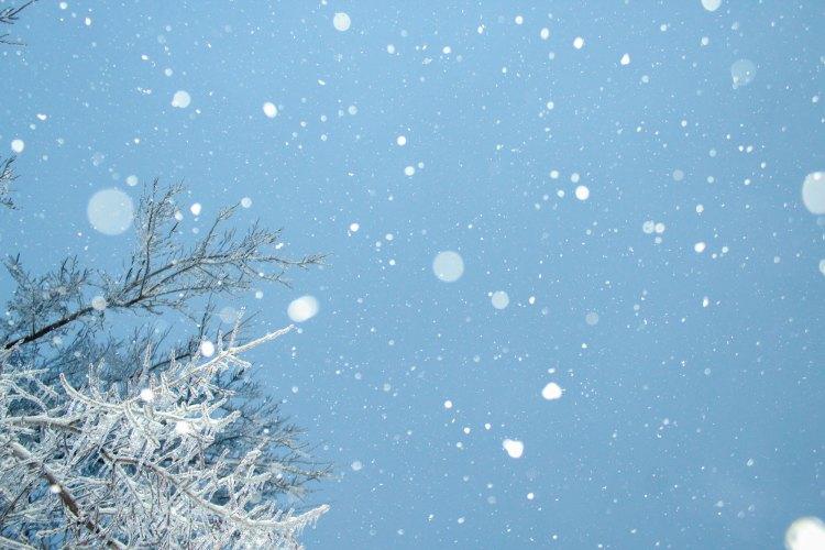 falling snow dark sky's