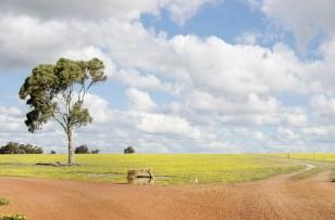 Daryl & Jodie, Wagin, Western Australia