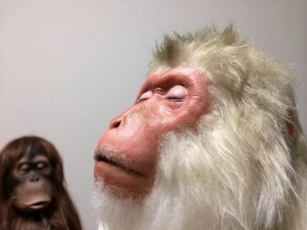 ニホンザルのリアル彫刻, snow monkey sculpture