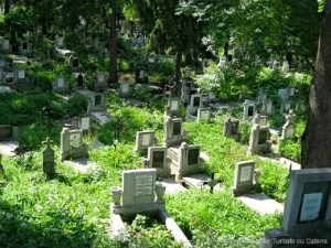 LIfe is so short. Our tombstones state our lives as one little dash. How are you spending yours?