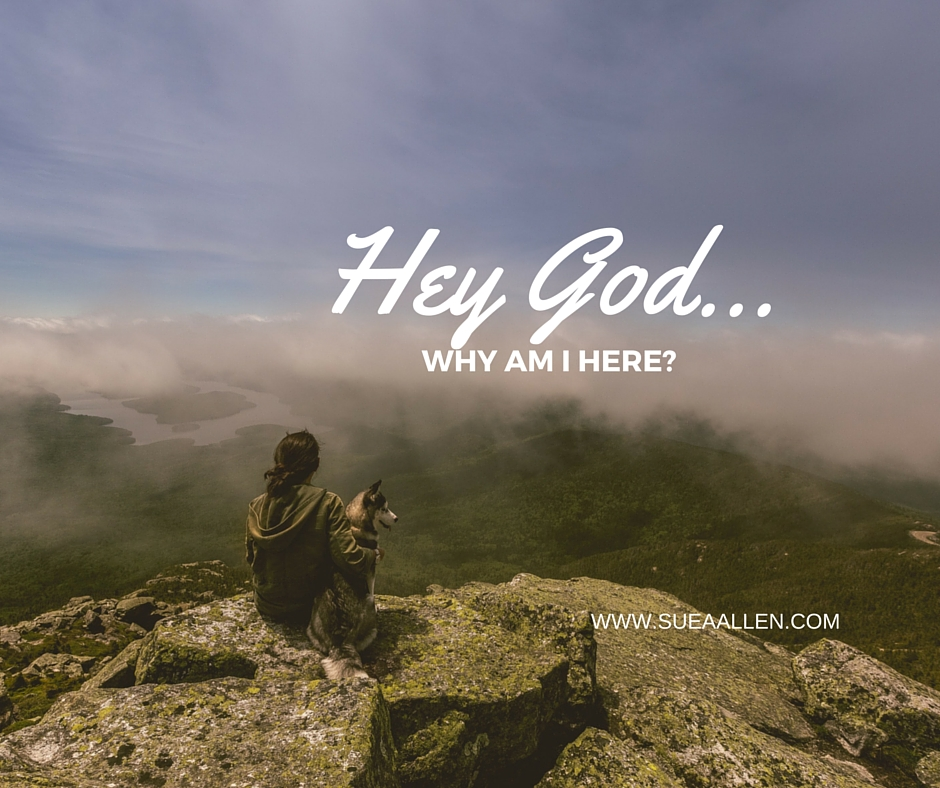 Hey God, Why in the World Am I️ Here?