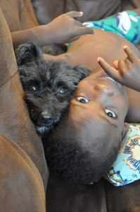 My son, Comerson, with my friend's dog, Cupcake