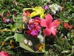 Bali July 2012 032