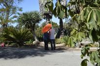 Palos Verdes Peninsula (6)