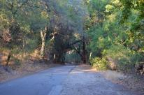 See You Again, Trabuco Canyon!