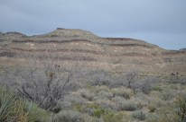 Mojave National Preserve 008
