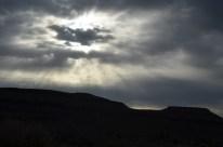 Mojave National Preserve 239