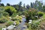 Hot Afternoon, Cool Garden Paths (7)