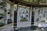 Japanese Garden at the Huntington (13)