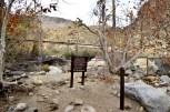 Hiking Andreas Canyon, part 1 of 2 (21)
