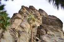 Hiking Andreas Canyon, part 1 of 2 (7)
