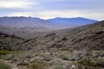 Hiking Andreas Canyon, Part 2 of 2 (12)