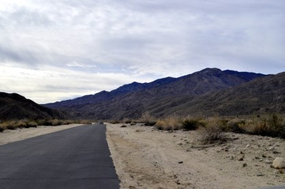 West Fork Trail and Palm Canyon (1)