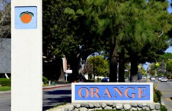 Weekly Photo Challenge, Orange (1)
