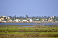 Oil rigs next to homes and wetlands