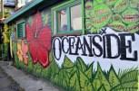 Colorful Oceanside (13)