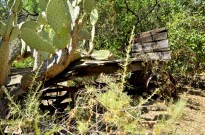 Old wagons line the trail