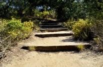 Hiking Oak Canyon Nature Center (24)