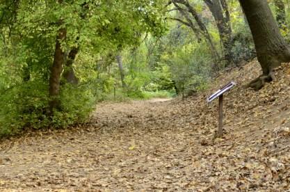An Autumn Day in Oak Glen (9)