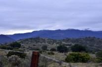 Sunday Morning Drive Near Orange (4)