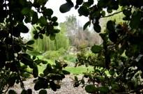 Descanso Gardens in March, part 1 (5)