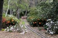 Descanso Gardens in March, part 1 (8)