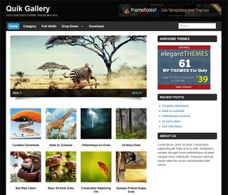 Quik Gallery WordPresstheme