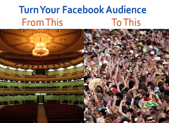 Empty and Crowded Facebook Audience