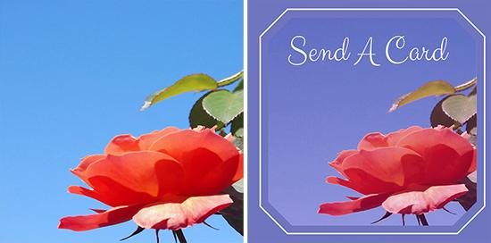Make a Social Media Image Greeting Card