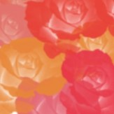 FloralCollection13