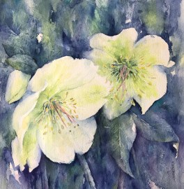 Heavenly Hellebores SOLD