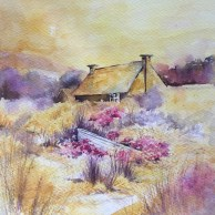 Thrift Cottage amongst the Sand Dunes SOLD
