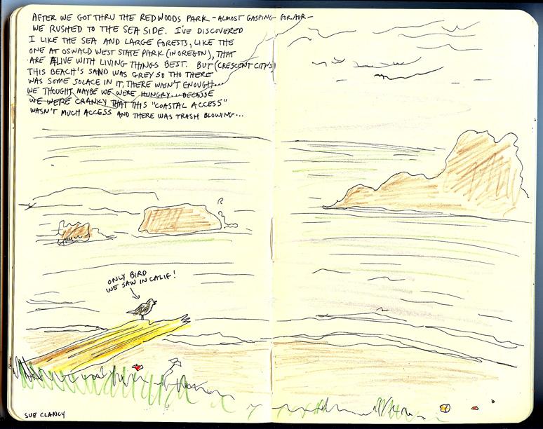 oregon coast sue clancy