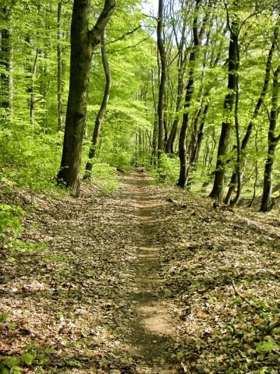 Trail wie ich Ihn mag