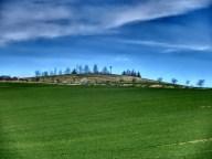 Die Bornhöhe am Romberg