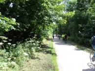 Hassop Bike Trail Nr Bakewell Derbyshire