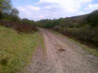 Walking an old coach path along Ramsley Moor.