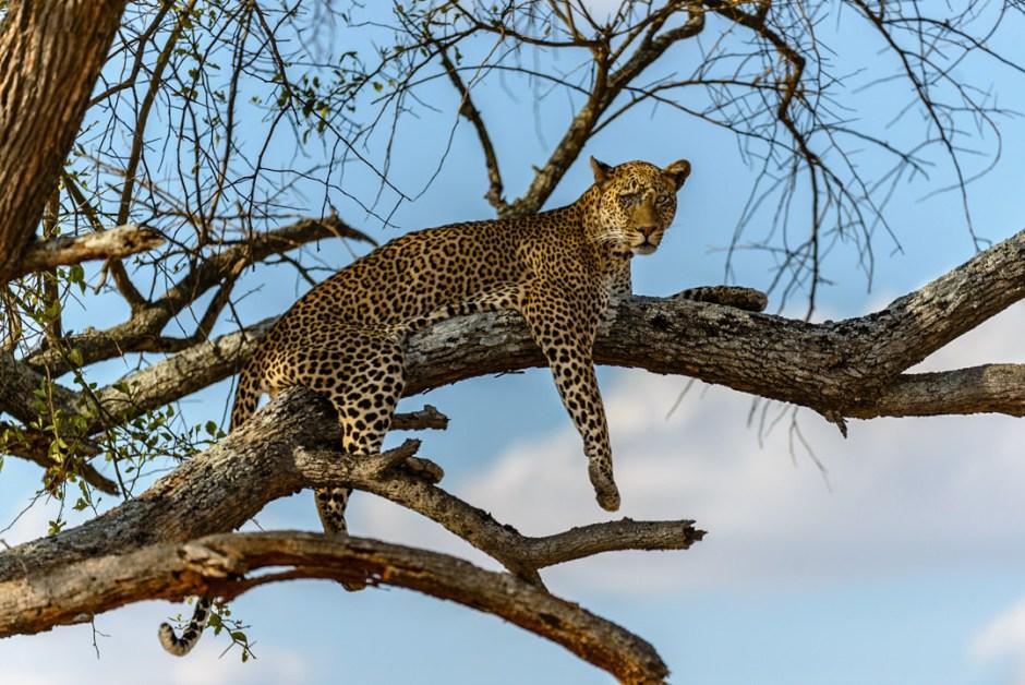 Tanzania-0640.jpg
