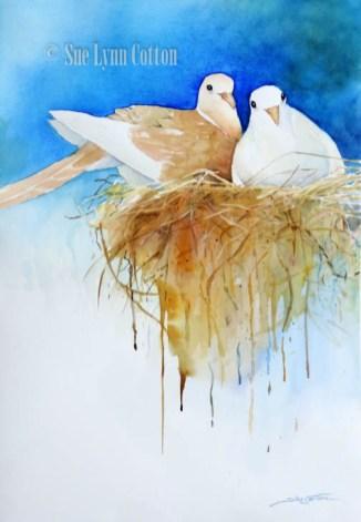 Doves Nesting $99