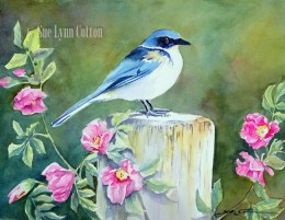 Bluebird with Roses $99