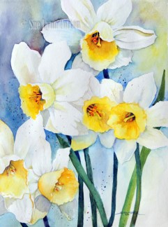 Daffodil Dancers $99