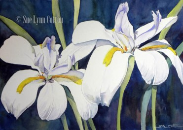 African Lilies $99