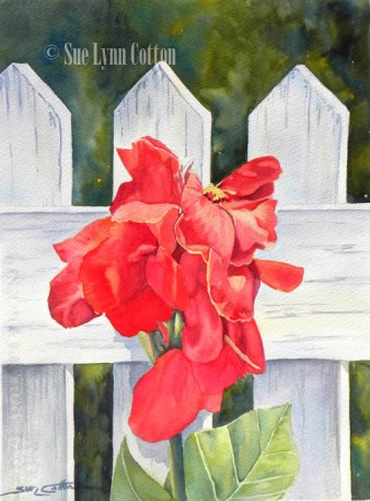 Red Canna and Picket Fence $99