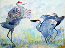 Sandhill Cranes Dancing $110