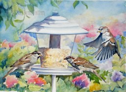 Sparrows on the Feeder $99