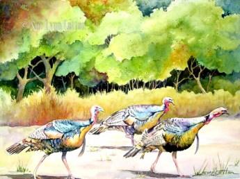 Turkeys on the Prowl $99
