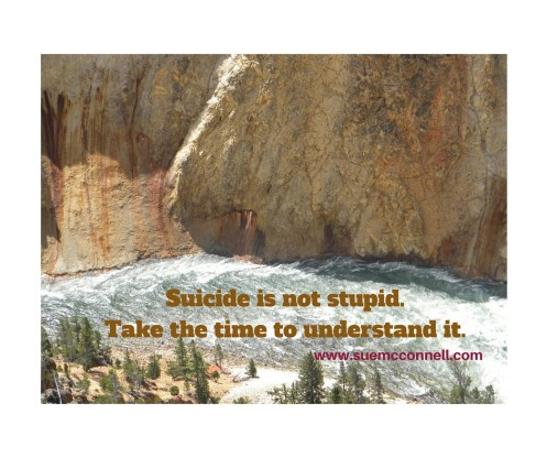 Suicide is not stupid.Take the time to understand it.